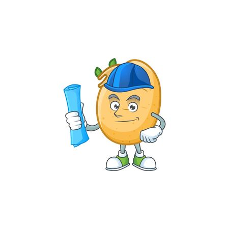 Cheerful Architect sprouted potato tuber cartoon character having blue prints. Vector illustration