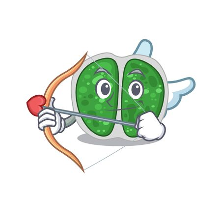 Chroococcales bacteria in cupid cartoon character with arrow and wings Illustration