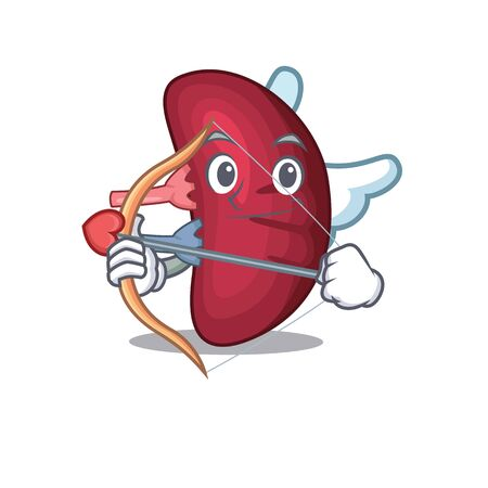 Human spleen in cupid cartoon character with arrow and wings. Vector illustration