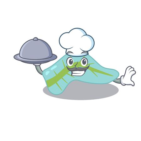 mascot design of pancreas chef serving food on tray. Vector illustration