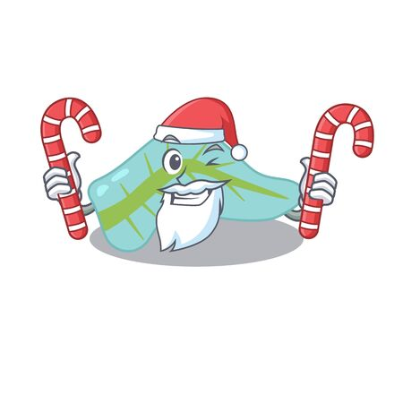 Friendly pancreas dressed in Santa Cartoon character with Christmas candies. Vector illustration