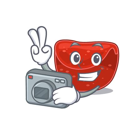 a professional photographer meatloaf cartoon picture working with camera. Vector illustration Illustration