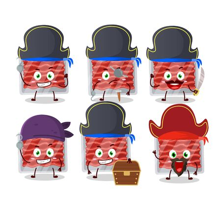 Cartoon character of ground meat with various pirates emoticons.Vector illustration