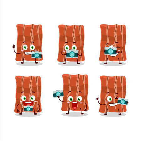 Photographer profession emoticon with fried bacon cartoon character