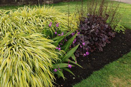 perennial garden bed Reklamní fotografie
