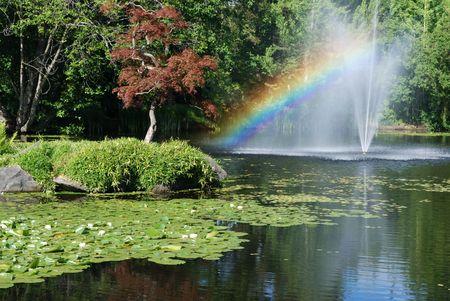 ユリの池にレインボー 写真素材