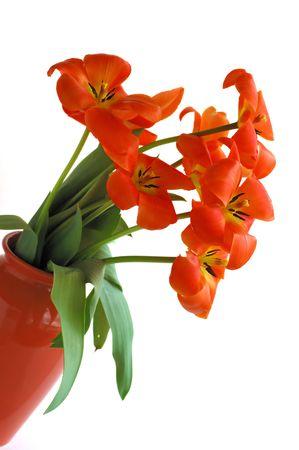 vase: orange tulips in vase Stock Photo