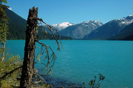 garibaldi: cheakamus lake, garibaldi provincial park Stock Photo