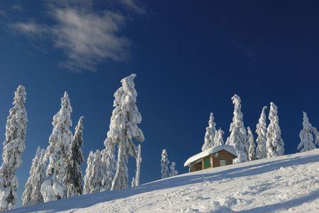 seymour mountain winter scene
