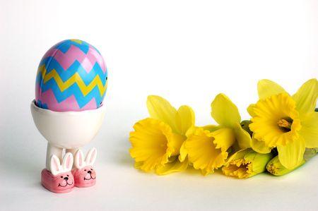 daffodil and easter egg photo