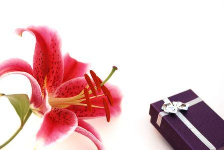 stargazer lily: red stargazer lily and gift box