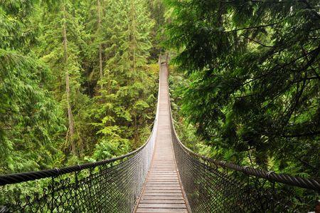 lynn valley suspension bridge, north vancouver