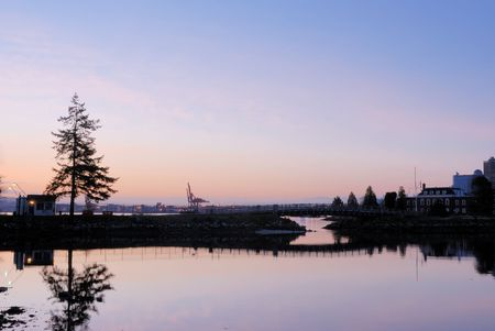 stanley: stanley park at sunrise
