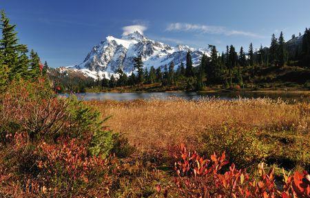 picture lake and mount shuksan Фото со стока
