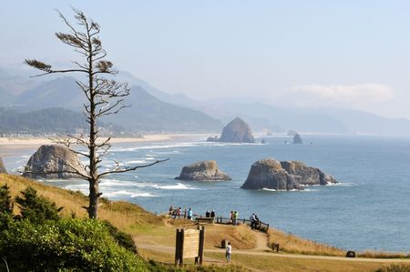 Cannon Beach viewed from Ecola State park photo