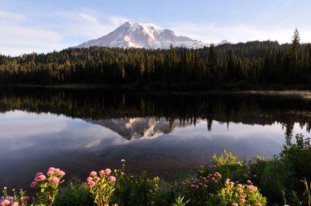 mt rainier: Mt. Rainier and Reflection Lake at sunrise  Stock Photo
