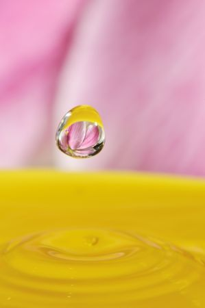 abstract water drop with lily flower inside