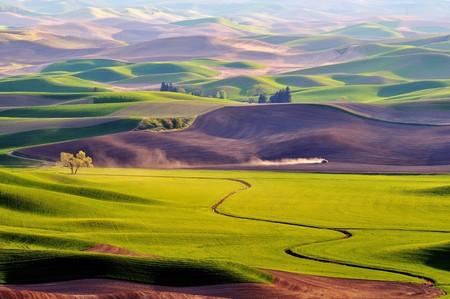 The rolling hills farmland in Palouse Washington Stock fotó