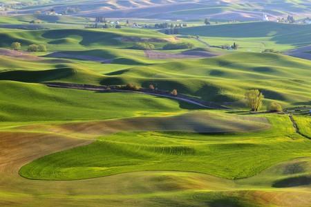 The rolling hills farmland in Palouse Washington photo