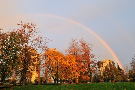 Rainbow over autumn color tree and high-rise buildings photo