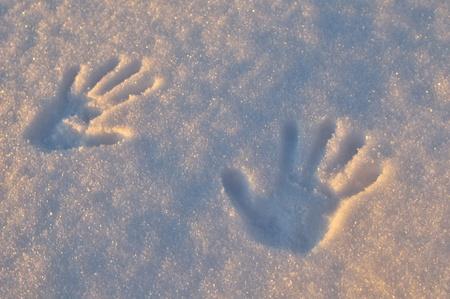 Empreintes sur les frais de la neige sous la lumière du lever du soleil Banque d'images - 8434357