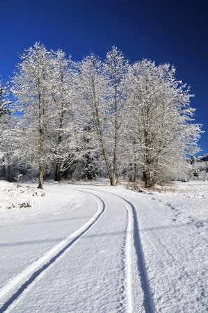 Countryside road with winter fresh snow and blue sky