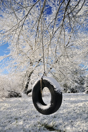 a tire swing hanging on the snow covered tree branches Stock Photo - 8821941