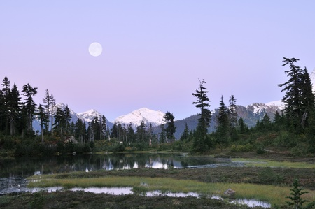 Heather Meadows  in Mt. Baker-Snoqualmie National Forest photo
