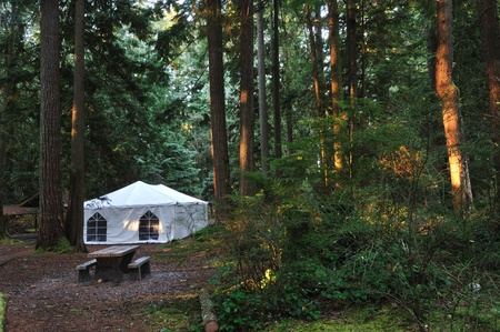 Tent in Lynn Valley Park, North Vancouver photo