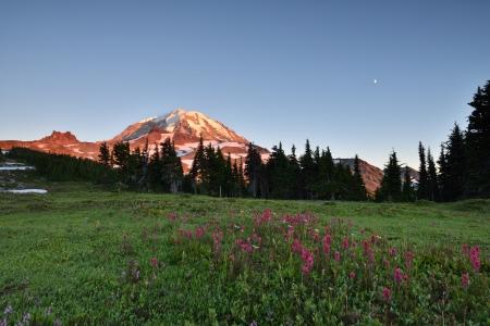 MOUNT RAINIER: Sunset at Spray Park, Mt  Rainier National Park Stock Photo
