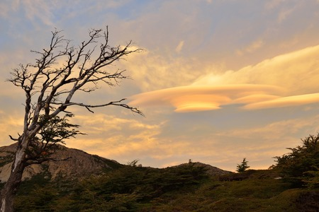 lenticular: Lenticular Clouds in Parque Nacional Los Glaciares, Argentina
