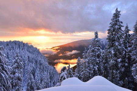 Winter Sunset on Grouse Mountain, Vancouver, British Columbia Stok Fotoğraf
