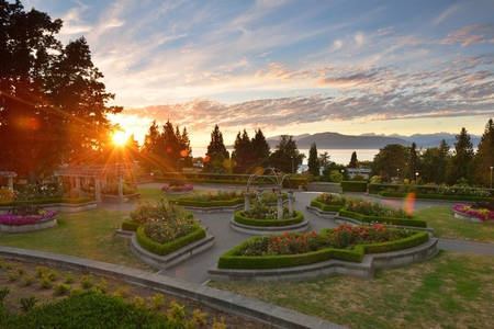 ocean plants: UBC Rose Garden at sunset, Vancouver, BC