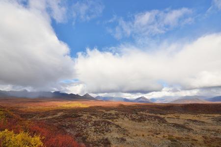 denali: Beautiful Autumn Colors  on Denali Hwy, Alaska