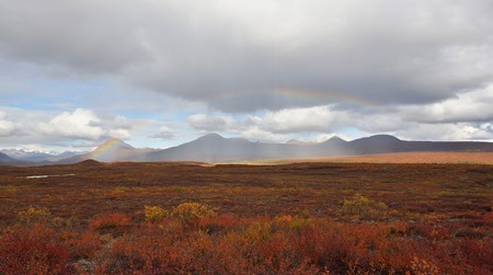 autumn colors: Beautiful Autumn Colors  on Denali Hwy, Alaska