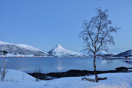 Winter Dawn on Stonnesbotnen, Senja, northern Norway Reklamní fotografie