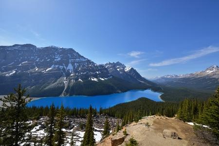 zafiro: Azul zafiro de color Peyto Lake, Parque Nacional de Banff, Alberta, Canad�