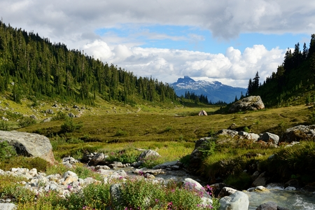 tusk: Black Tusk Viewed From Brandywine Meadows (Coast Mountains, British Columbia, Canada)