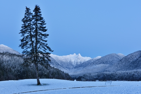 watershed: Cleveland Park with Lions Mountains in winter morning, North Vancouer Stock Photo