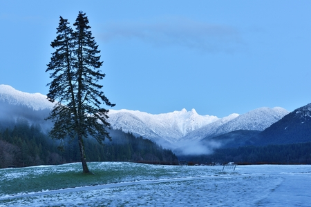 watershed: Cleveland Park with Lions Mountains in winter morning, North Vancouver