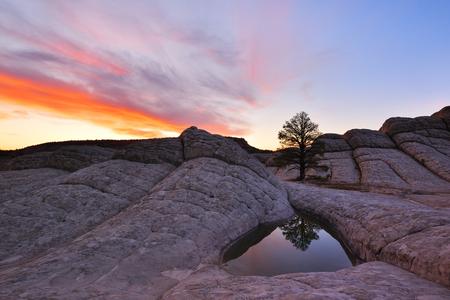 White Pocket sunrise, Paria Canyon-Vermilion Cliffs, Arizona