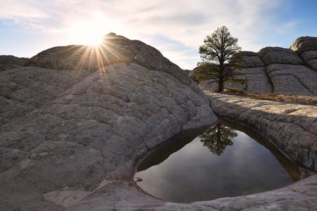 paria canyon: White Pocket sunrise, Paria Canyon-Vermilion Cliffs, Arizona