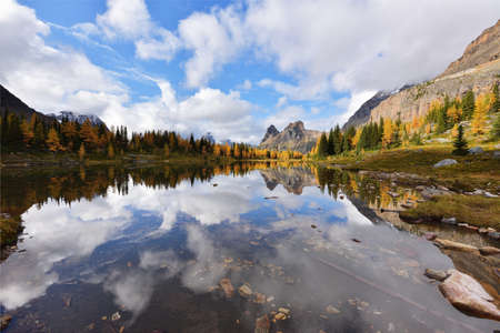 Opabin Plateau trail and Lake O'Hara, Yoho National Park, BC