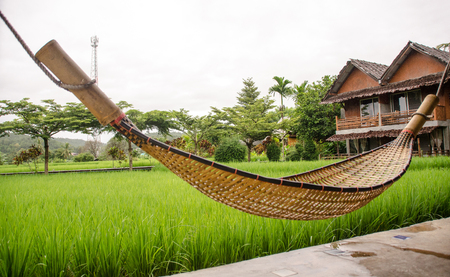 Bamboo hammock beside green rice field with yellow flare light in morning.Mae Hong Son.Thailand Stock Photo