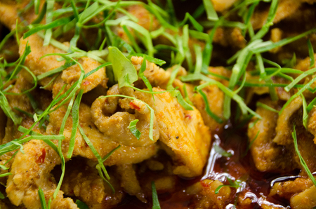 mussaman curry, chicken curry with Kaffir lime leaves Stock Photo