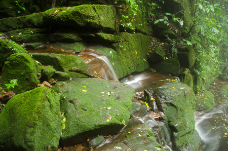 Sai Thaip waterfall with stone of green moss in rain forest ,  Phu Soi Dao National Park, Utaradit, Thailand.