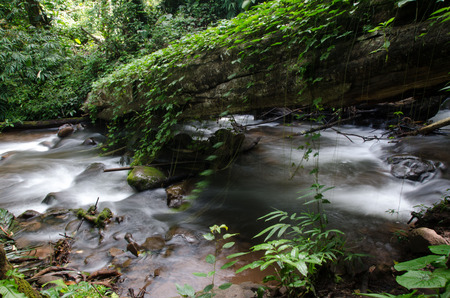 Phu Sai Dao waterfall with stone of green moss in rain forest ,  Phu Soi Dao National Park, Utaradit, Thailand.