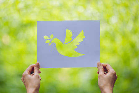 Show Cut paper with the of pigeon template of peace concept,International Peace Day Stock Photo
