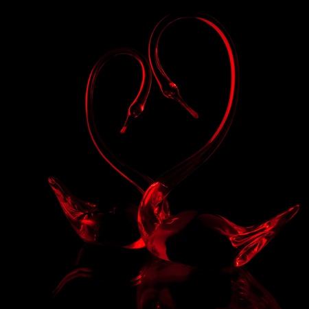 a couple of red glass swans on the black background photo