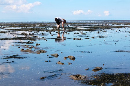 girl in the North Sea at low tide
